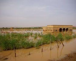 3490_Ueberschwemmungsgebiet Tintane