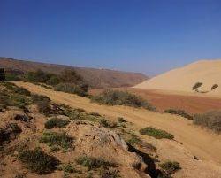 Marokko_2012_0240
