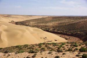 immer dicht oberhalb des Oueds bleibend...