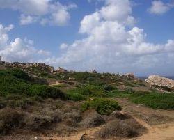 Sardinien_2011_0140