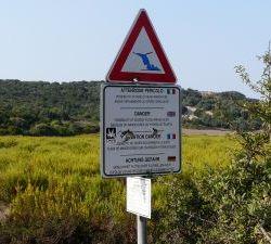 Sardinien_2011_0675