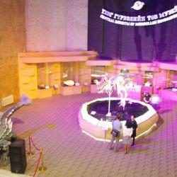 0023070_UB_Dino_Museum_Einganghalle