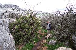 Enge schmale Pfade führen uns durch den Felsengarten