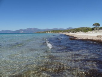 "Sand, Seetang, Wasser - der ""Strandaufbau""."