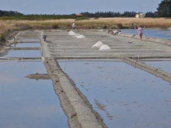 Salzgewinnung auf der Insel Noirmoutier im Atlantik,...