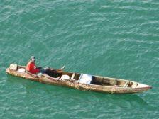 ...und einheimische Fischer.