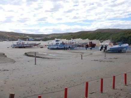 ...ist auch Ausgangshafen für die touristischen Whale-Watching-Touren.