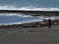 ...an der Playa Escondida...