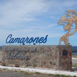 0032914_Camarones