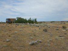 Die RP57 führt uns nach Puerto Coig - ein Haus, vier Hunde und etliche Ruinen.