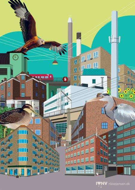 Fuglekvarteret 2 collage - glente, sneppe, herje