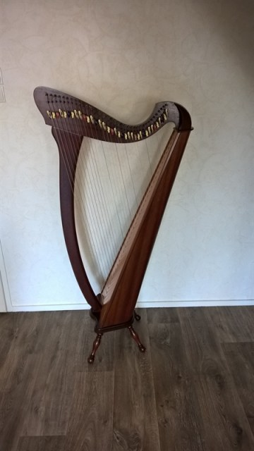 camac harp na revisie