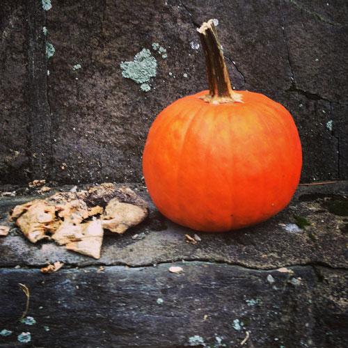 spring-pumpkin