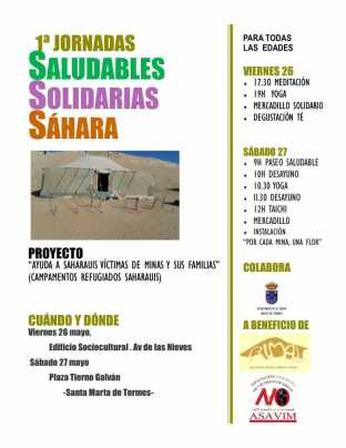 Saludables, Solidarios, Sáhara