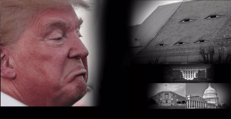 446463fb851 Things Trump Did While You Weren't Looking [2019] | Blog#42 | Blog ...