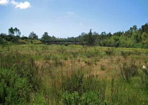 The Crosby Habitat Management Program