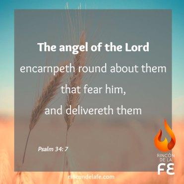 Mensajes y citas bíblicas en inglés