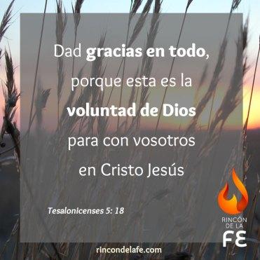 Frases cristianas de acción de gracias