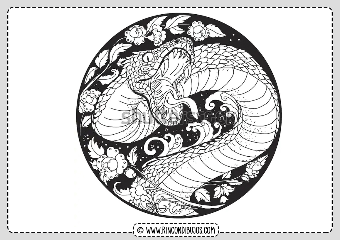 Japanese Snake For Coloring