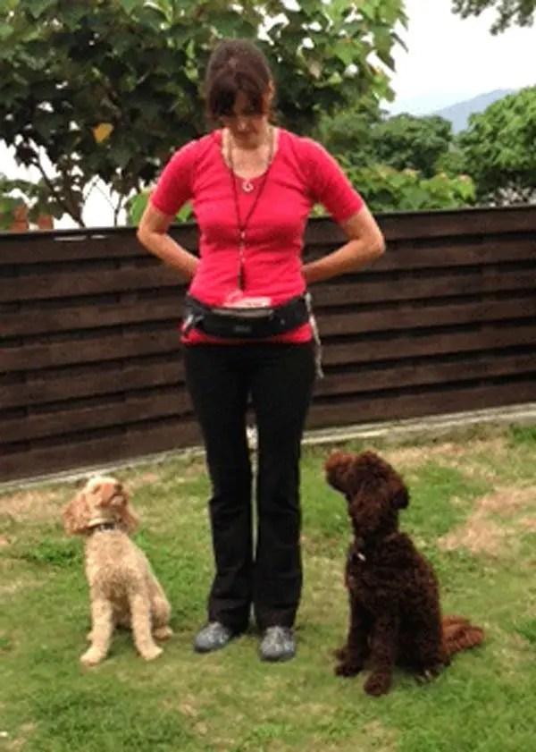 Isabelle Adams-Papé, Dog Trainer, Ringwood Dogs, Ashley Heath, Ringwood, Hampshire