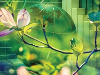 AlmavivA aderisce al Global Compact delle Nazioni Unite