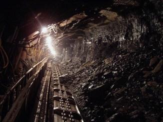 WWF, con la giusta strategia è possibile abbandonare il carbone