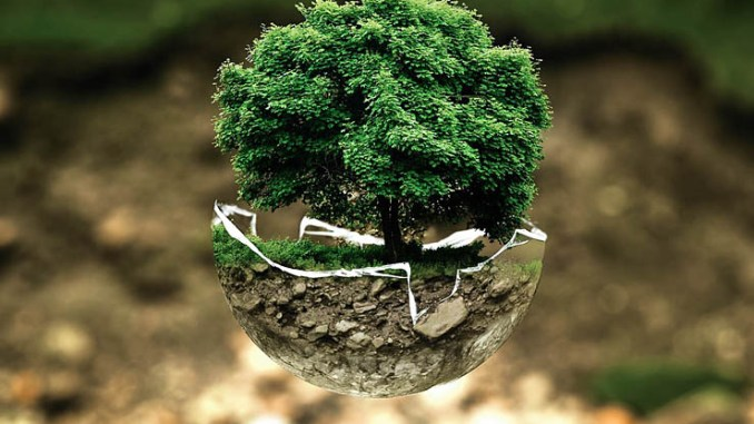 Schneider Electric sarà carbon-neutral entro il 2030