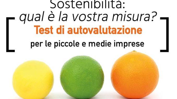 Test sostenibilità PMI