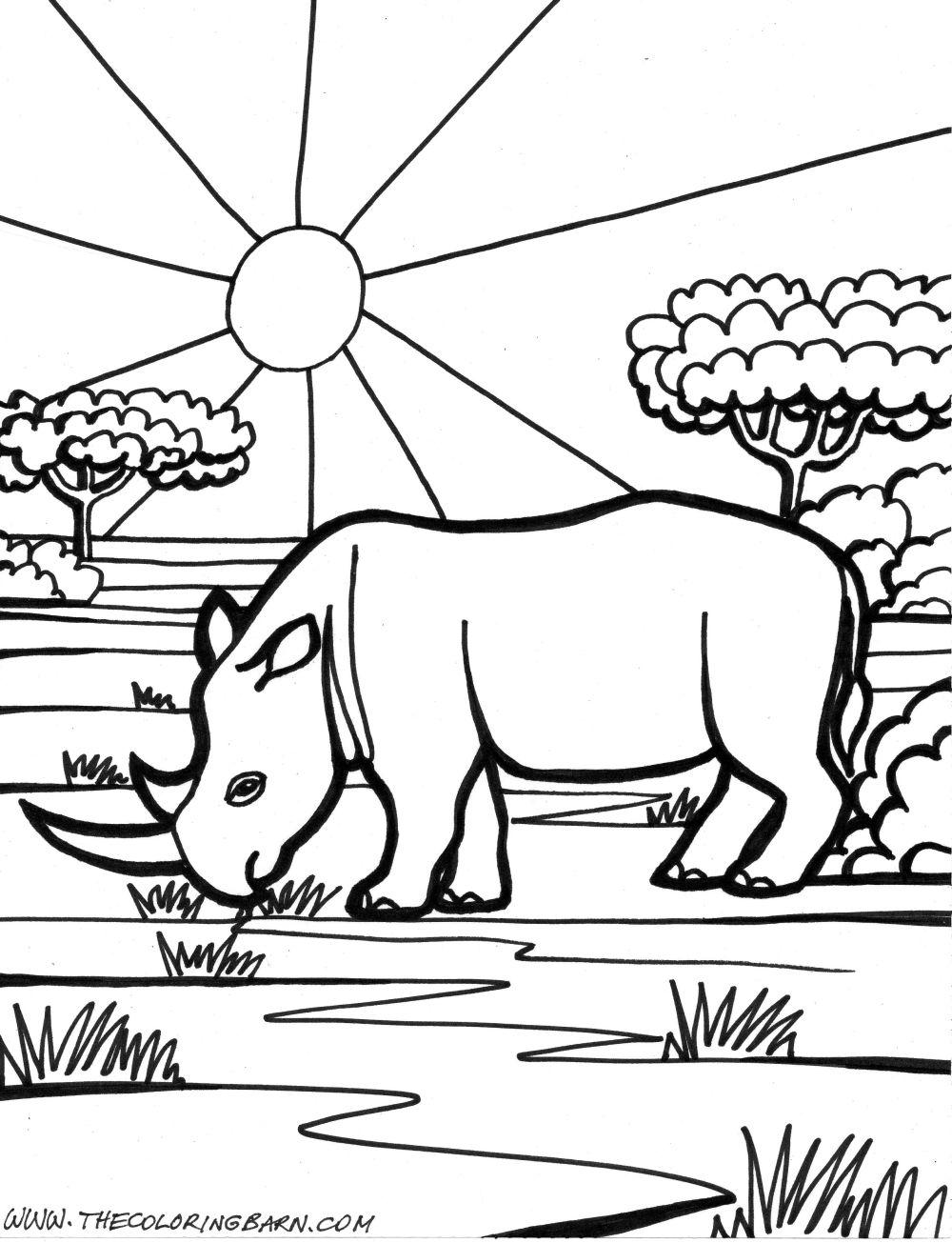 rhinoceros coloring page jpg