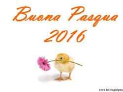 immagini-auguri-pasqua-2016