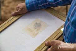 04 rintelnaktuell kohlenstaedt archeologie ausgrabungen windkraftanlagen vorbereitung bau boden knochenfund windrad