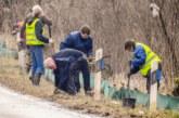 Wärme und Regen lassen Amphibien erwachen: NABU baut Schutzzaun an Waldkater und in Möllenbeck