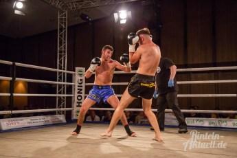 19 rintelnaktuell vorprogramm abend kickboxen frauenboxen profiboxen piergiulio ruhe sport brueckentorsaal boxring event waru kampf gegner runden