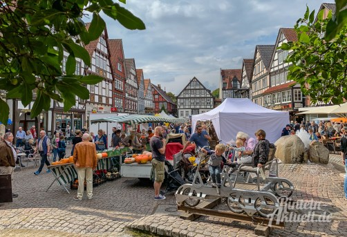 14 rintelnaktuell oeko bauernmarkt innenstadt city altstadt 8.9.2019 landwirtschaft essen trinken