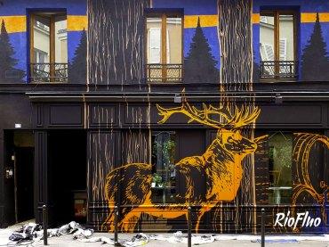 Riofluo-déco-graffiti-37