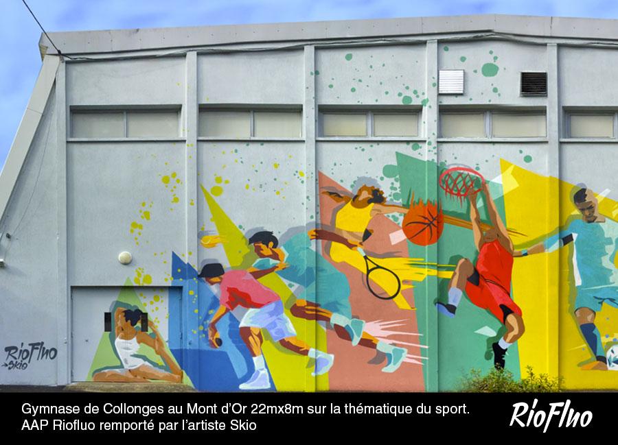 Gymnase de Collonges au Mont d'Or 22mx8m sur la thématique du sport. AAP Riofluo remporté par l'artiste Skio