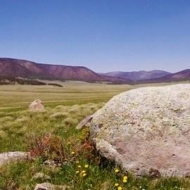 Transition at Valles Caldera