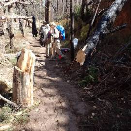 photo of trail work in Bandelier