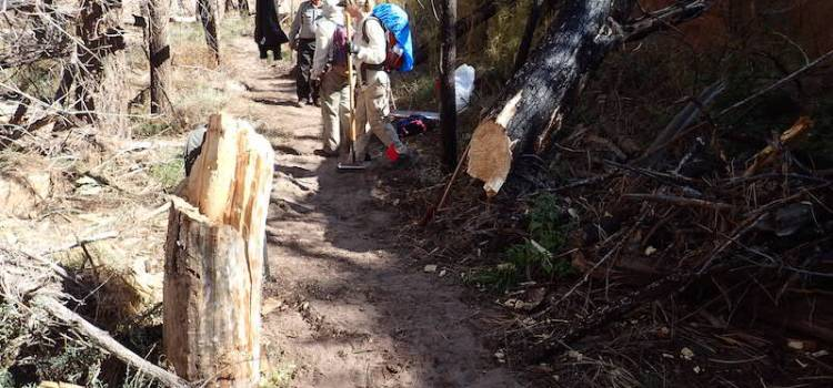photo of trail work in Bandelier