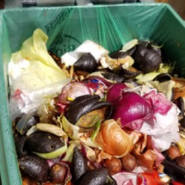 Zero Waste compost tour