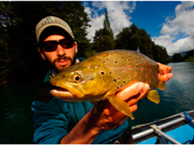 the-brown-trout-of-patagonia5