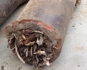 Rioolherstel riool reinigingsdienst de vos