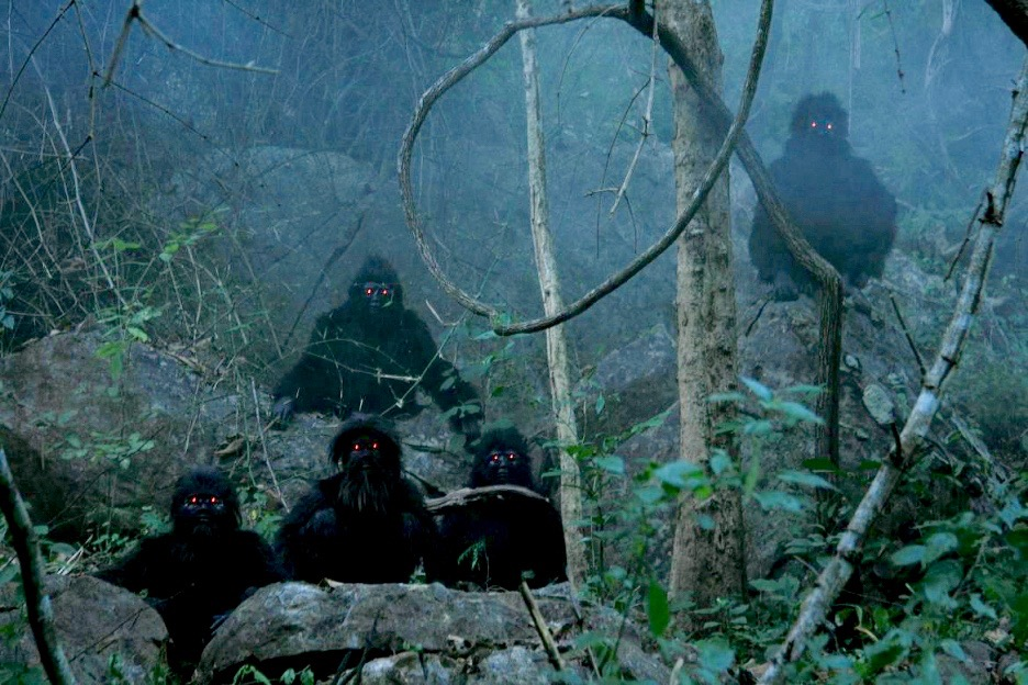 Uncle Boonmee Who Can Recall His Past Lives, in Cinema Disordinaire