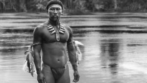Cinema Disordinaire: (Nilbio Torres) embrace of the serpent