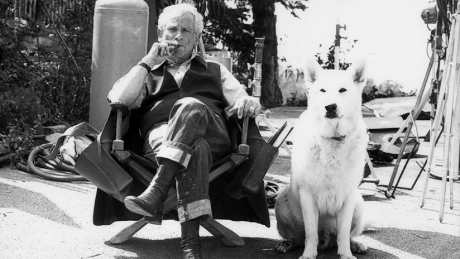 Sam Fuller, on the set of White Dog
