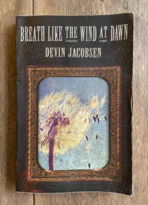 Breath Like the Wind at Dawn, by Devin Jacobsen, reviewed at Riot Material magazine.