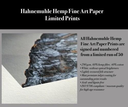 Hahnemuhle Hemp Fine Art Paper Limited Giclee Prints