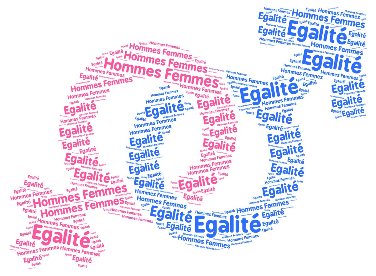 The Work Of The Observatory For Gender Equality In France