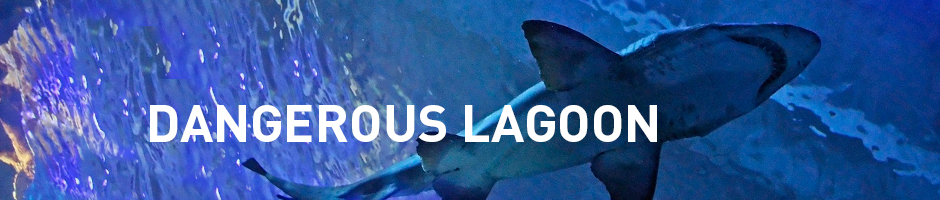 dangerous lagoon sharks in toronto