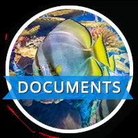 RAC-documents-icons